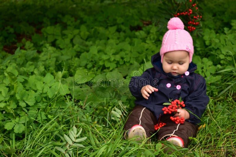 Baby girl with Rowan stock photo