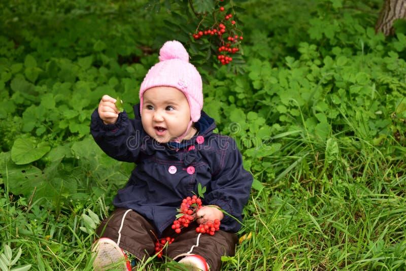 Baby girl with Rowan stock image