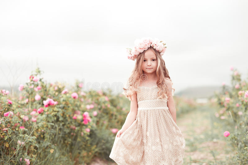 Baby girl walkig in rose garden stock photo