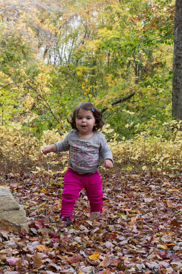 Baby Girl walking on leaves at Autumn. Baby Girl walking on red leaves at Autumn, in dinosaur place, CT stock image