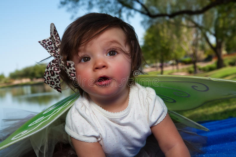 Baby Girl with Wings royalty free stock photography