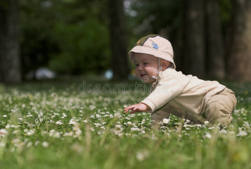 Baby on the green field 4. royalty free stock photos