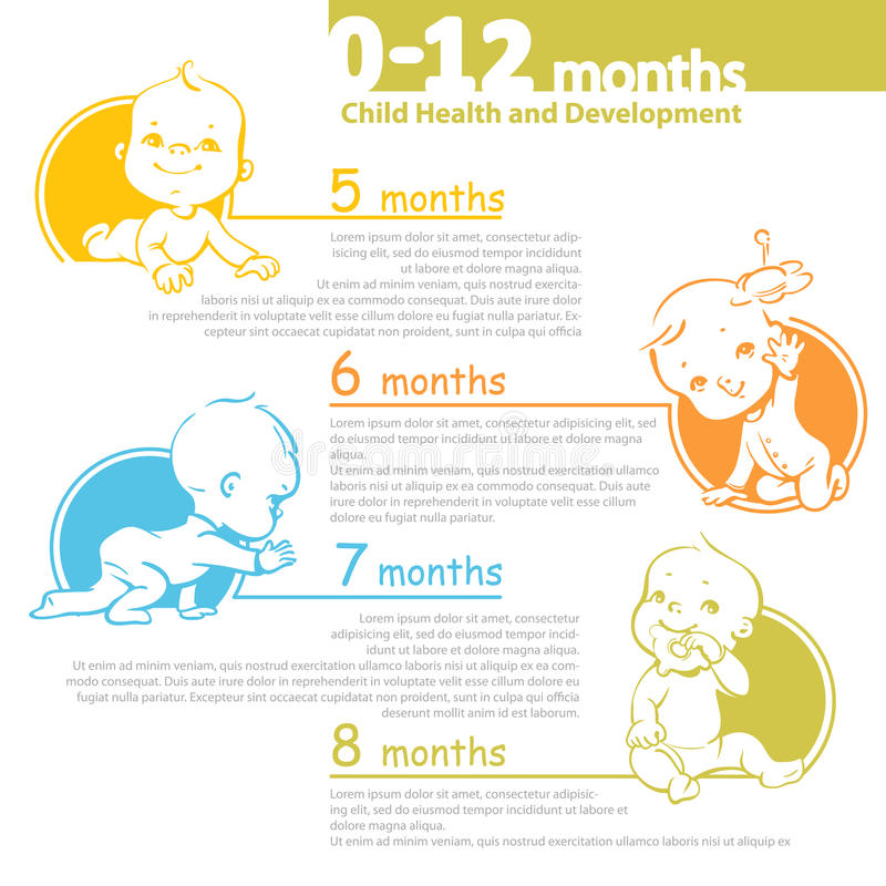 Baby growing up infographic. vector illustration