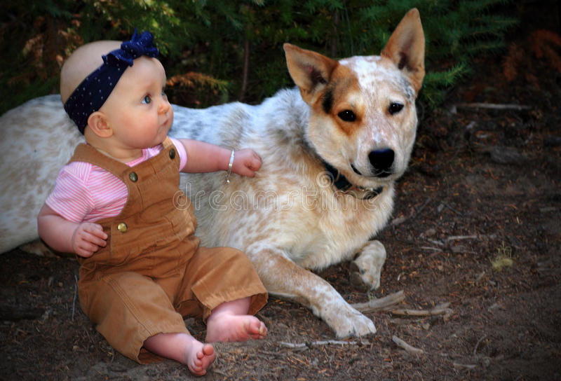 Baby and Guard Dog royalty free stock photography