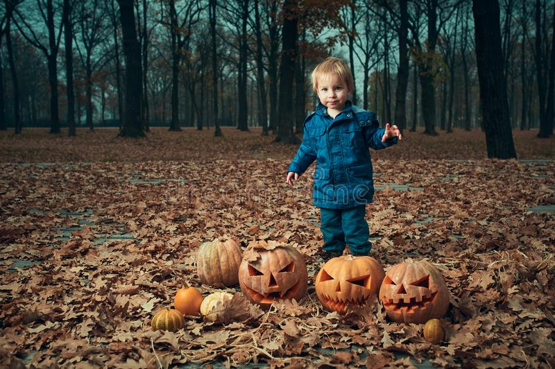Baby with Halloween Pumpkins in the autumn park royalty free stock image
