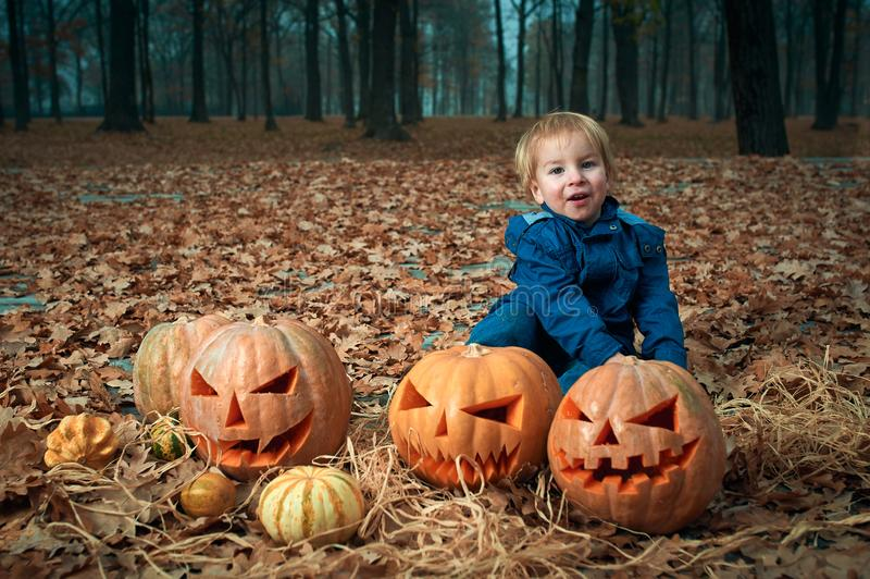 Baby with Halloween Pumpkins in the autumn park royalty free stock images