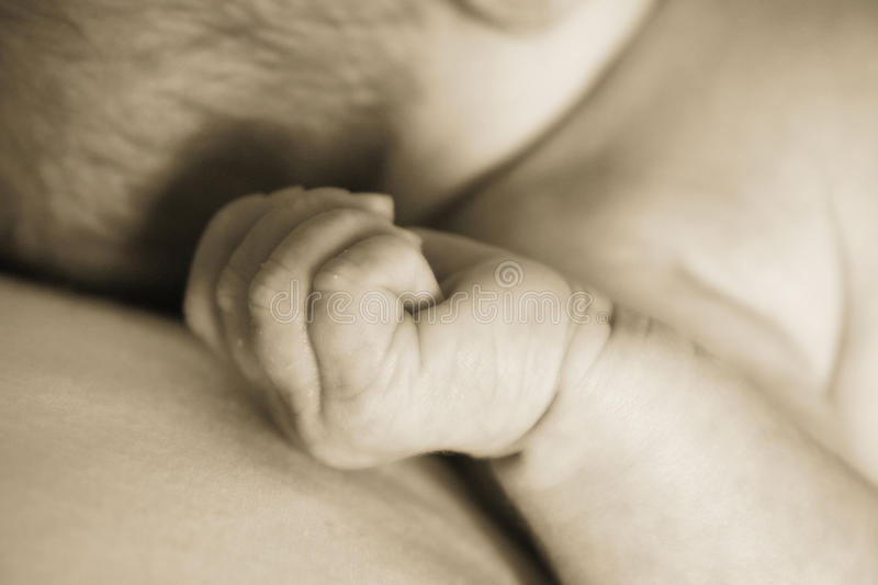 Download Baby hand stock image. Image of head, clenching, small - 14683645