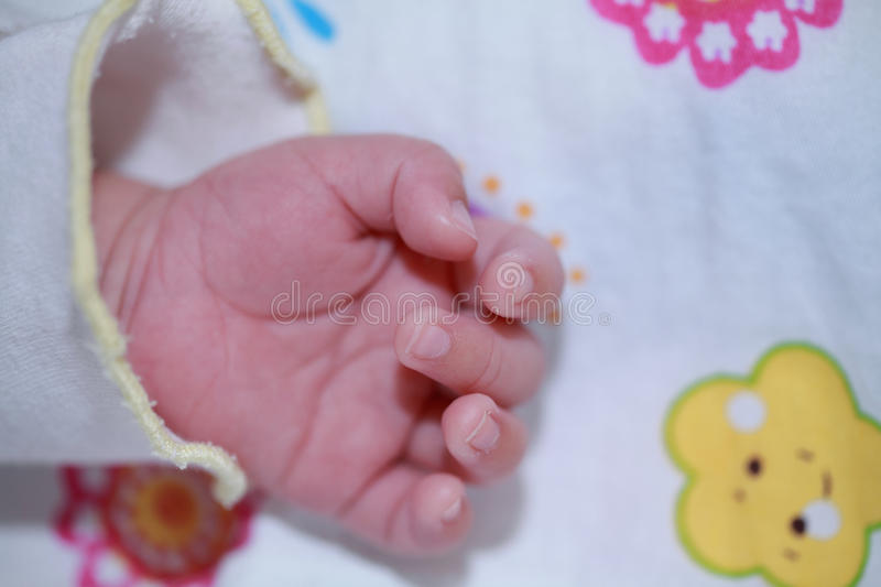 Download Baby Hand stock image. Image of finger, children, love - 24016569