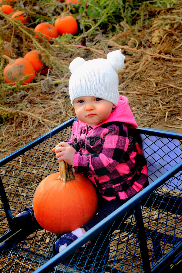 Baby happy in pumpkin patch wagon royalty free stock photos