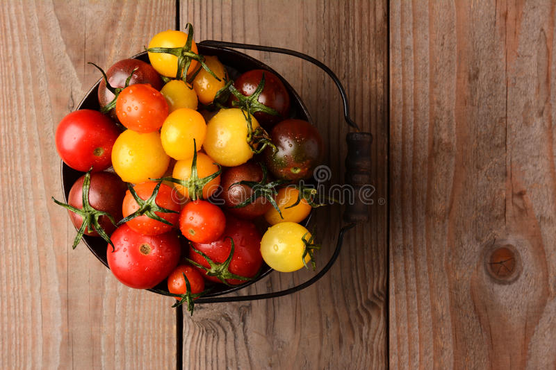 Baby Heirloom Tomatoes. In a bucket on a rustic wooden table top. Horizontal format, looking down on the pail royalty free stock photography