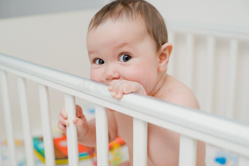 Baby het spelen in een voederbak stock afbeelding