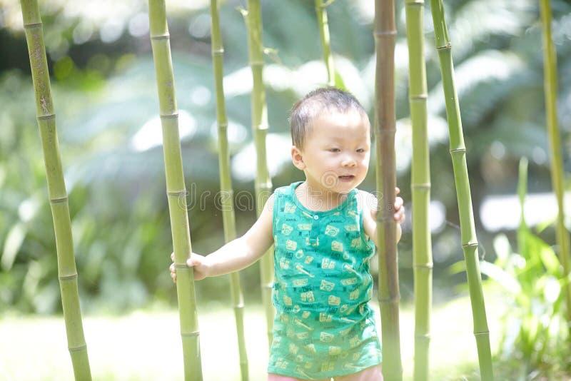 Baby im Sommer stockfotos