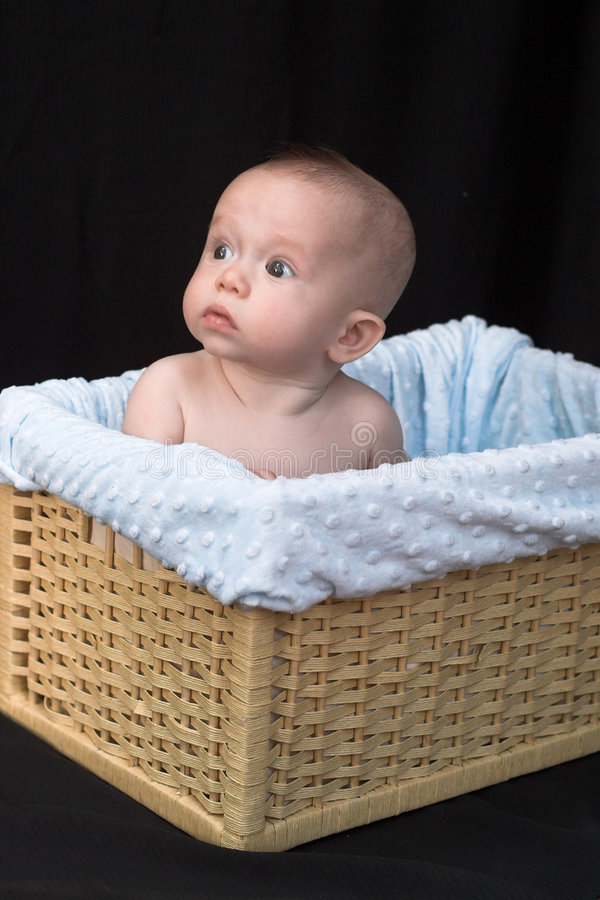 Free Baby In Basket Stock Photo - 1261100