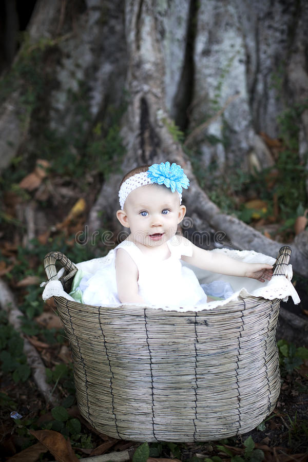 Free Baby In Basket Stock Photography - 20713692