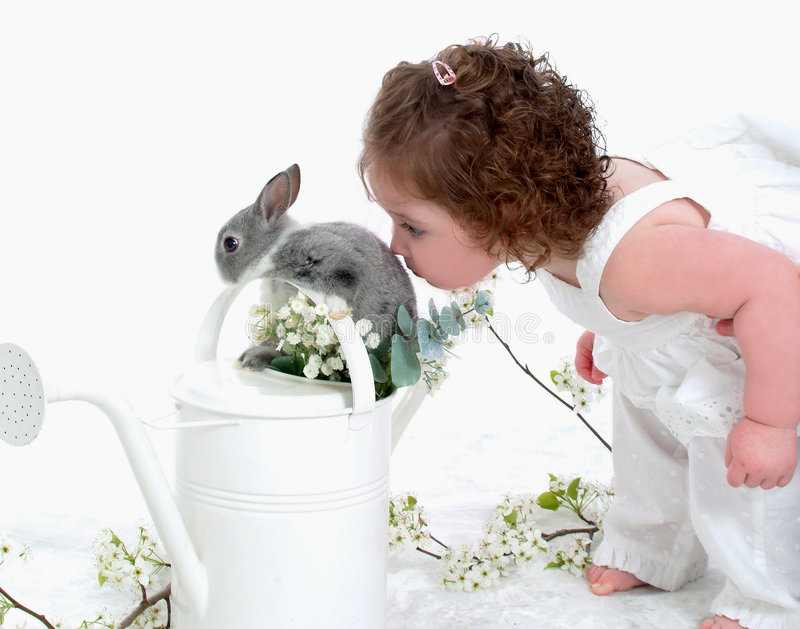 Baby Kissing Bunny. Baby girl kissing bunny in watering can in front of white background stock photography