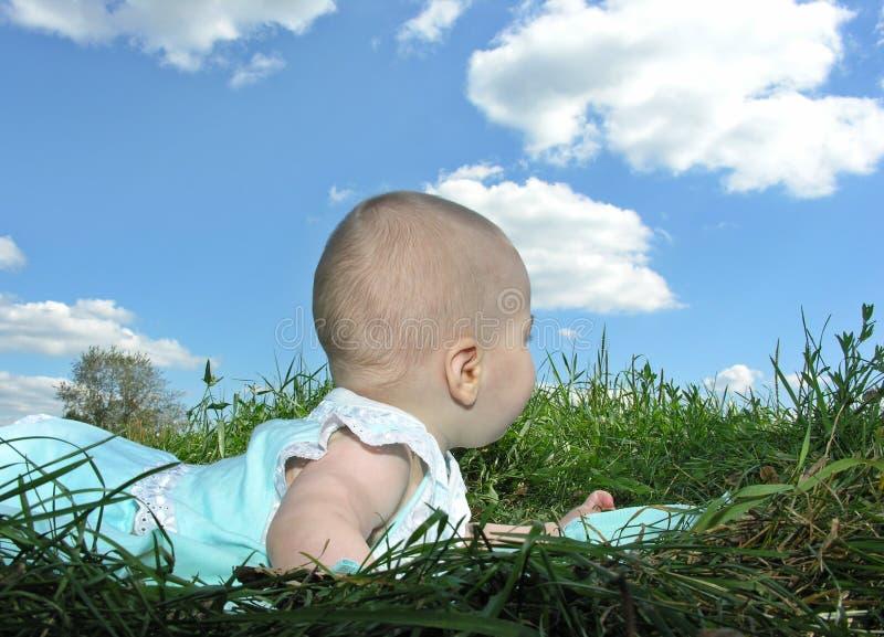Baby in kruid royalty-vrije stock fotografie