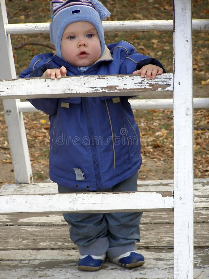 Baby on a ladder