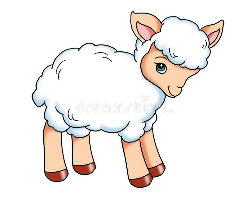 Baby lamb. Colored illustration of a tender lamb vector illustration