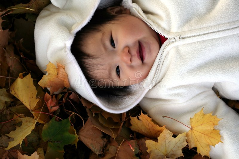 Download Baby in Leaves stock photo. Image of infant, leaves, pure - 3578696