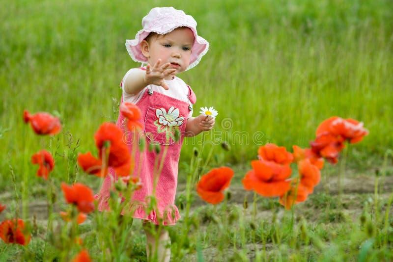 Baby-meisje met papavers royalty-vrije stock afbeelding