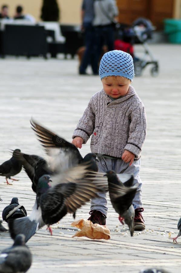 Baby met duiven stock fotografie