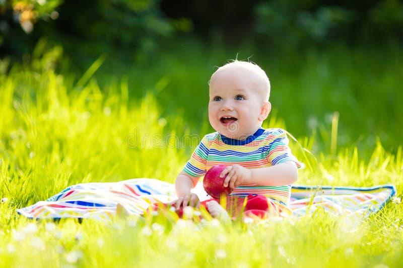 Baby mit Apfel auf Familiengartenpicknick lizenzfreie stockfotografie