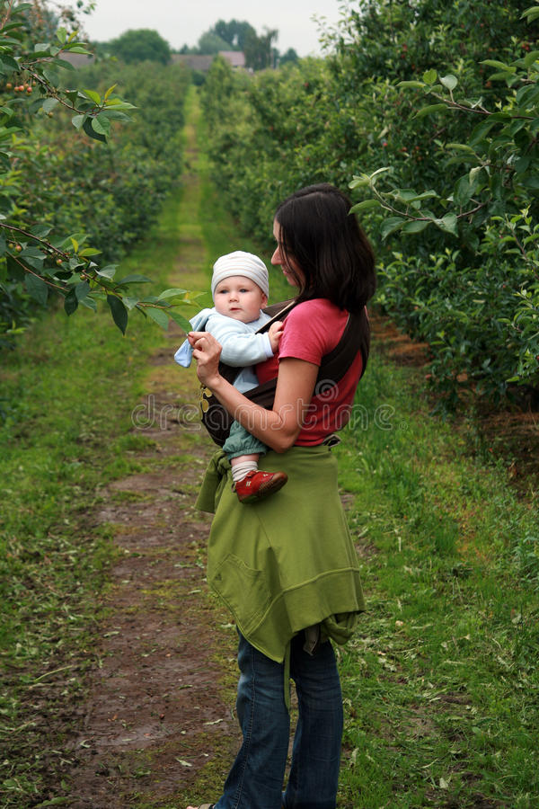 Download Baby With Mom In Baby Carrier Stock Photo - Image: 12397216