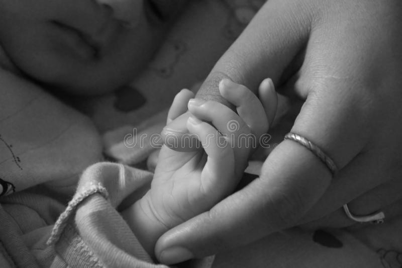Download Baby And Mother Bonding And Holding Stock Image - Image: 21371583