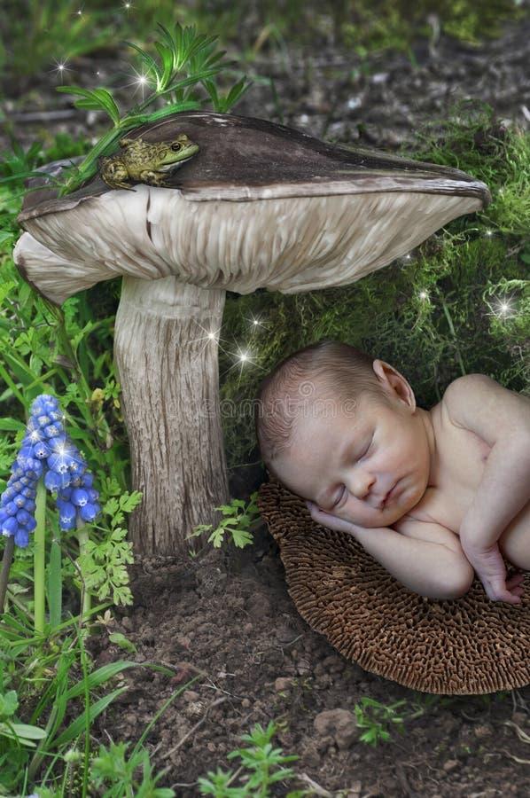 Baby newborn elf sleeping under a mushroom with fairies in wonderland stock images