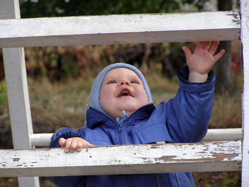 Baby op een ladder stock foto's