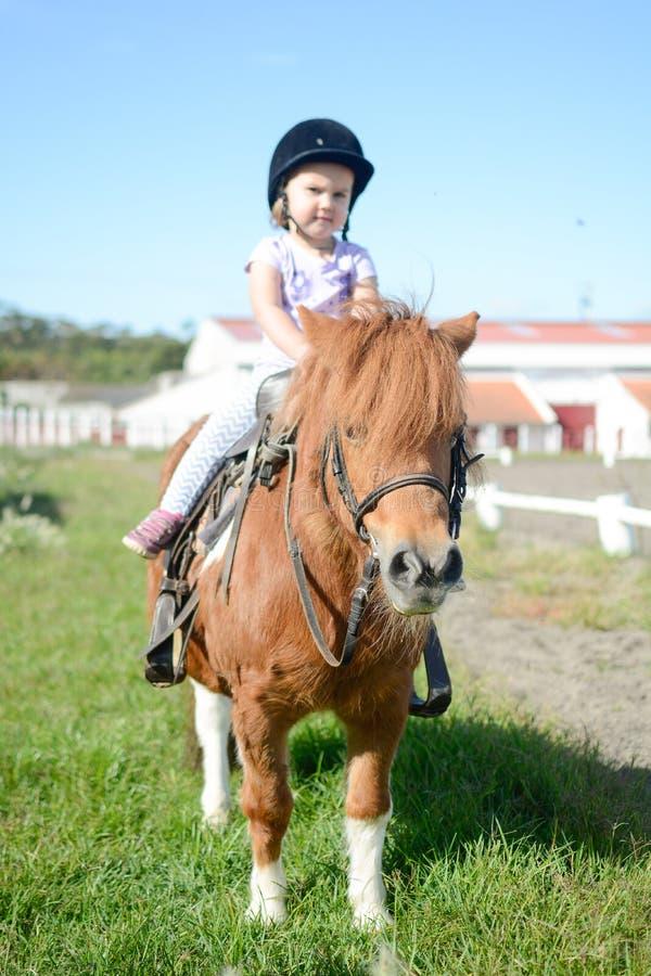 Baby op een poney stock foto's