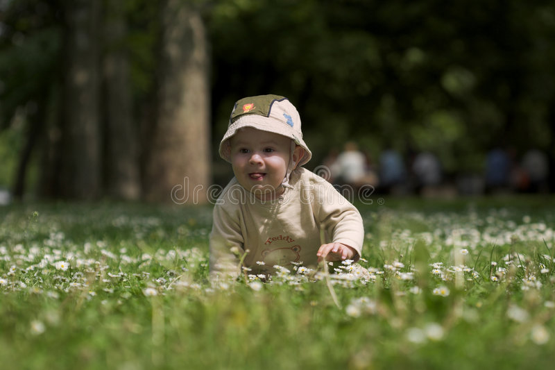 Baby op groen gebied 3. royalty-vrije stock foto