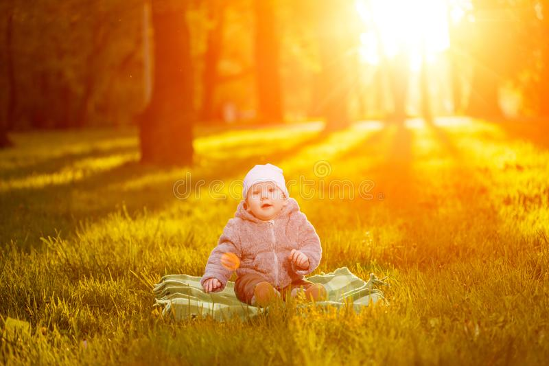 Baby in the park in the rays of sunset. Toddler on the nature outdoors. Backlight. Summertime family scene stock image