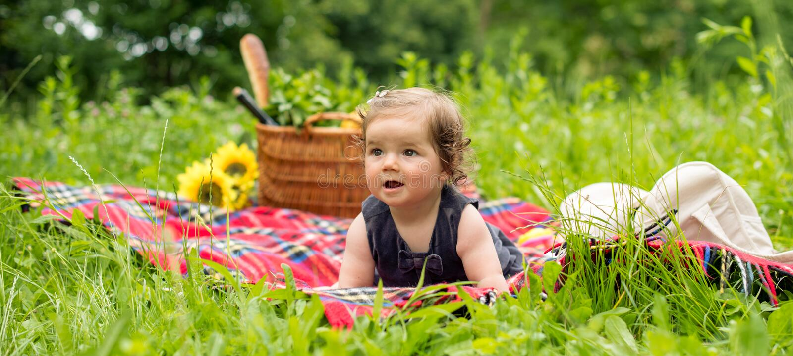 Baby on a picnic, panorama. In nature stock photo