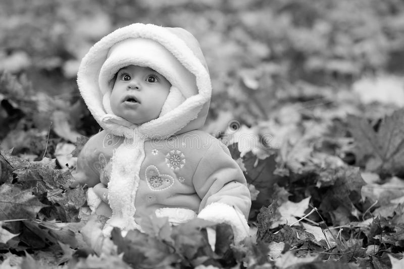 Baby in pile of leaves wearing winter coat. Black and white adorable big eyed baby sitting in a pile of autumn leaves wearing a fuzzy winter coat and looking stock images