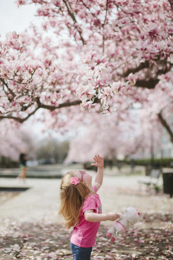 Baby In Pink Dress Trying To Reach Pink Flower Free Public Domain Cc0 Image