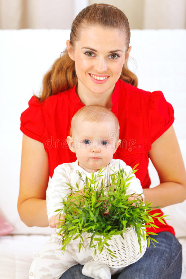 Baby playing with plant royalty free stock image