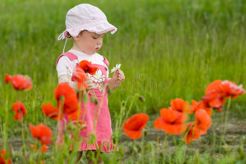 Download Baby with poppies stock photo. Image of walking, nature - 5530062