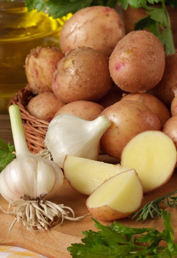 Baby potatoes. royalty free stock photos
