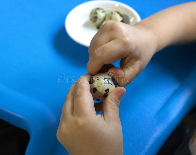 Baby and quail egg royalty free stock images