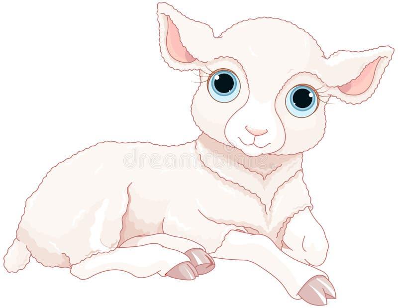 Baby sheep stock illustration