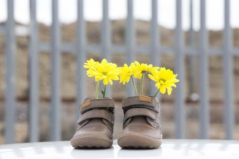 Baby shoes with yellow flowers royalty free stock images