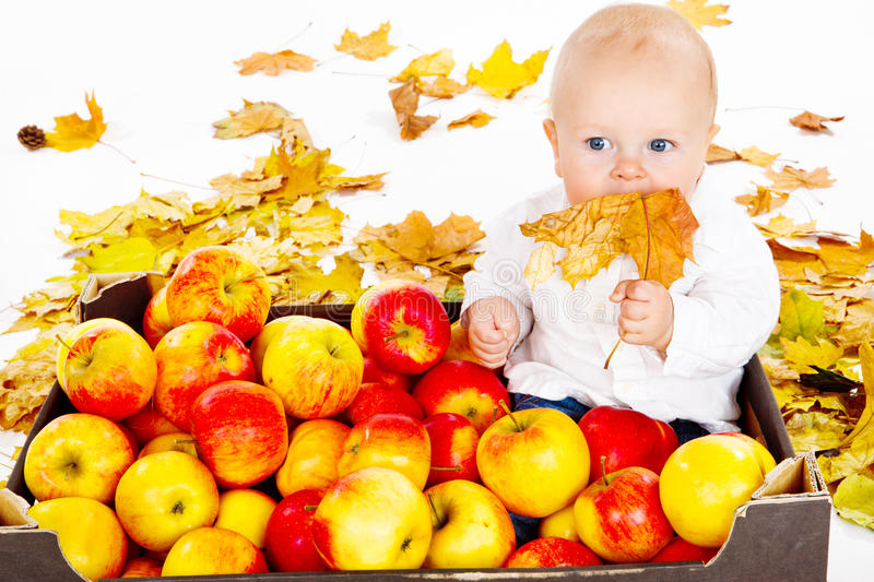 Baby sitting in apple box. Baby sitting in box full with autumn apples royalty free stock photography
