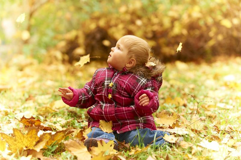 Baby sitting in autumn leaves. Happy smiling caucasian white baby girl sitting in the green grass outside between falling autumn leaves stock image
