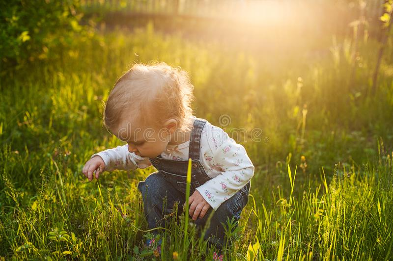 Baby sitting in the grass in sunlight. Cute summer blond girl in the garden.  stock images