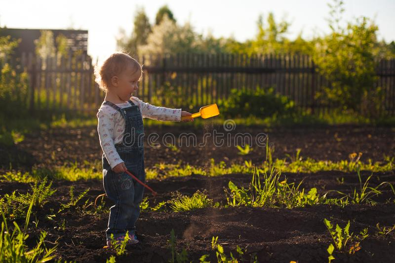 Baby sitting on the ground with shovel and rake in sunlight. Cute summer blond girl in the garden royalty free stock image