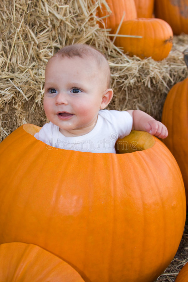 Baby sitting in hollow pumpkin. An adorable view of a small, 4 month old baby sitting in a large, hollow autumn pumpkin stock photography