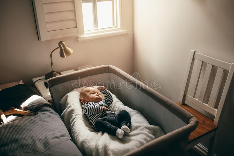 Baby sleeping in a bedside crib. Baby sleeping in a bedside bassinet in bedroom. Infant lying on a crib moving his hands and legs stock photos