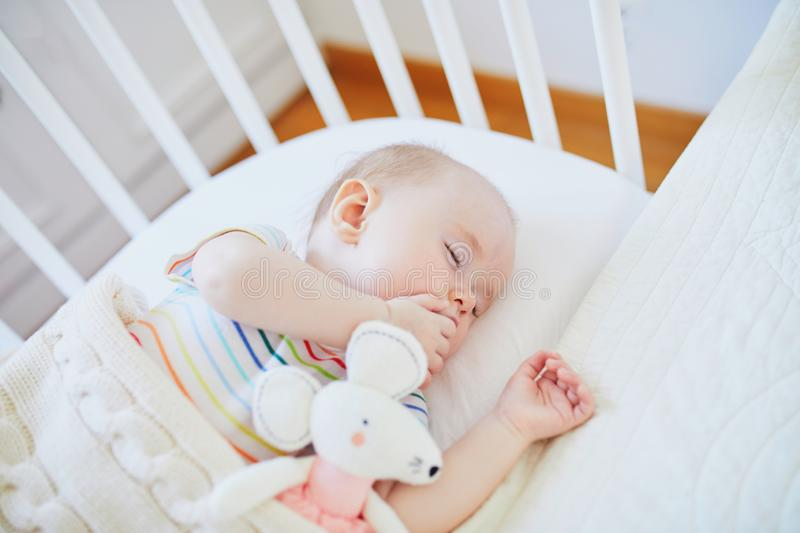 Baby sleeping in co-sleeper crib attached to parents` bed. Adorable baby girl sleeping in co-sleeper crib attached to parents` bed with stuffed toy. Little child royalty free stock photography