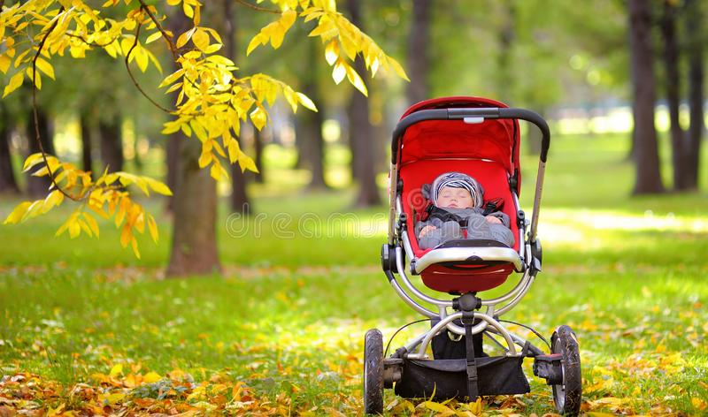 Baby sleeping in stroller in park stock photography